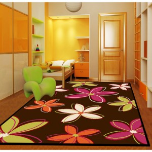 dorm-room-accessories-area-rug