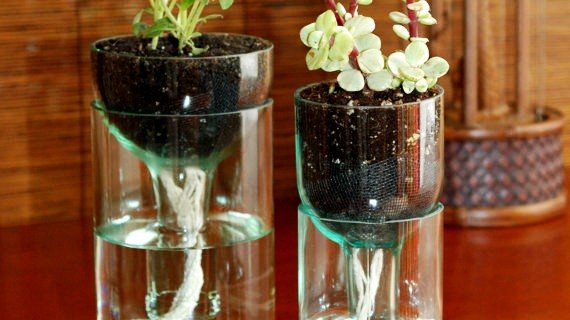 Creative Home Decor with a DIY Glass Planter